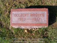020_bridges_delbert