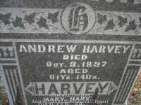 026_andrew_harvey